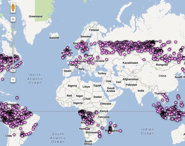 Мониторинг за вырубками лесов на картах Google