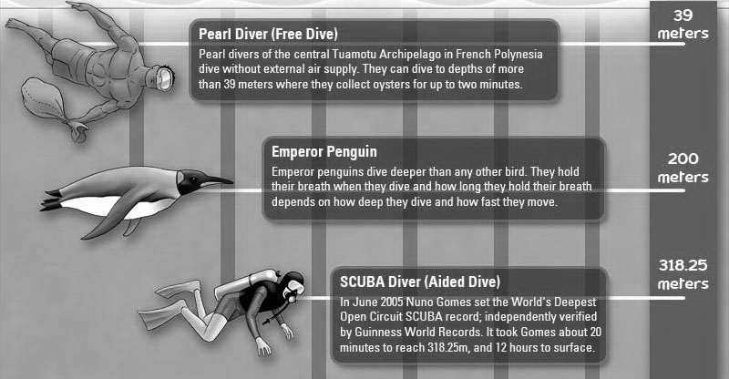 Diving the Depths
