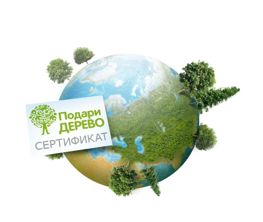 Подари дерево РФ