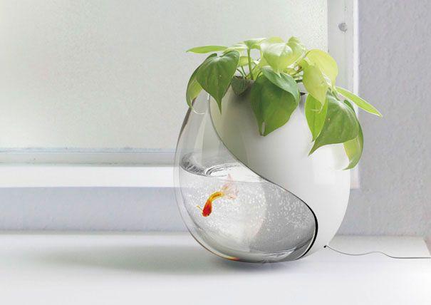 Аквариум-цветочный горшок