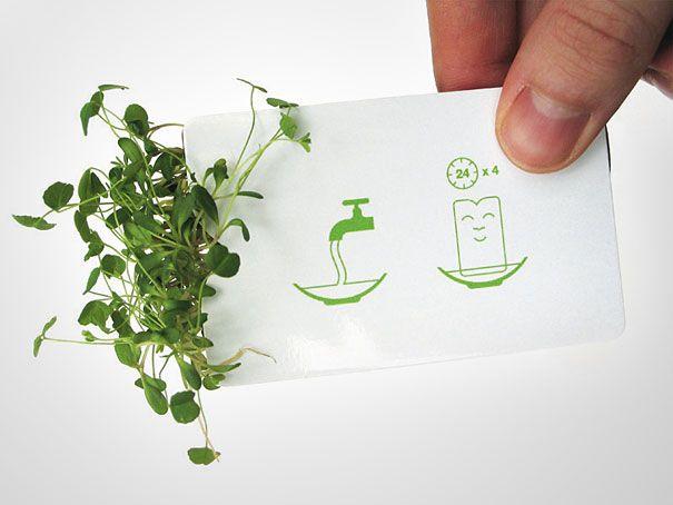 Зелёная визитка