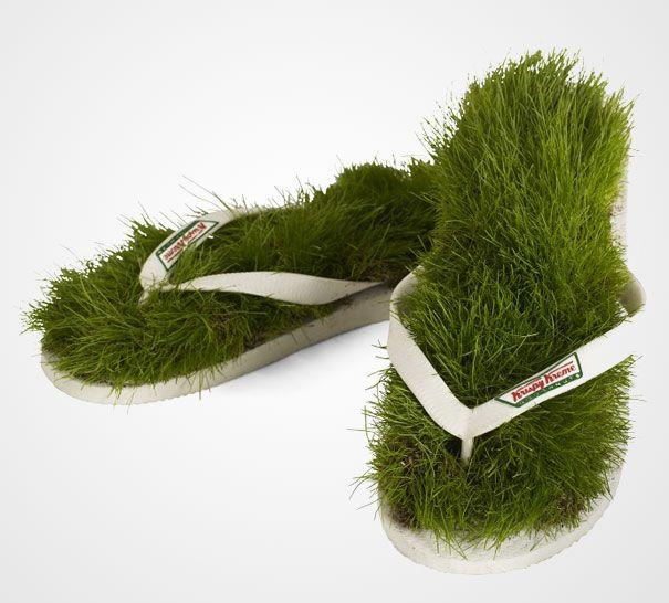 Зелёные сланцы