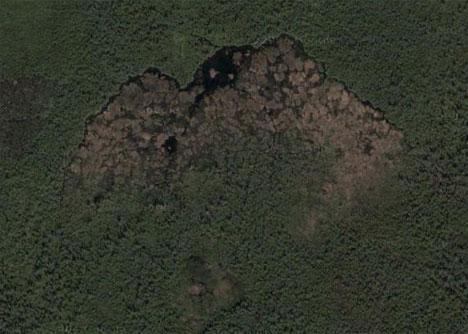 Плотина, возведённая бобрами. Вид из космоса.