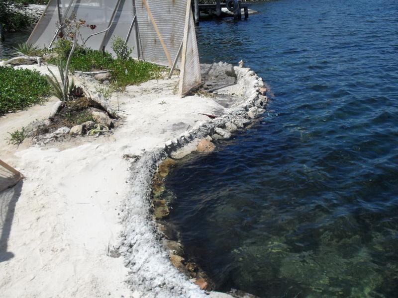 Spiral Island: Пляж