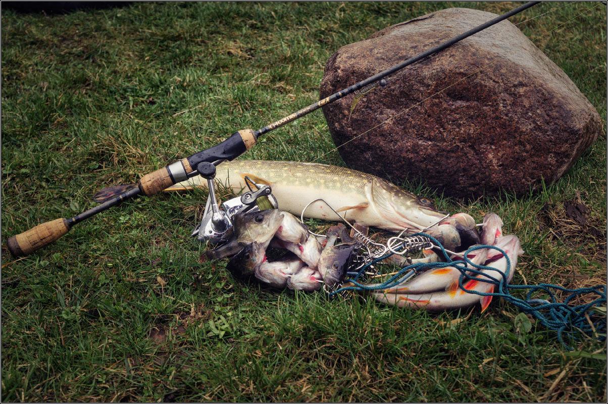отчет о рыбалке ранней весной