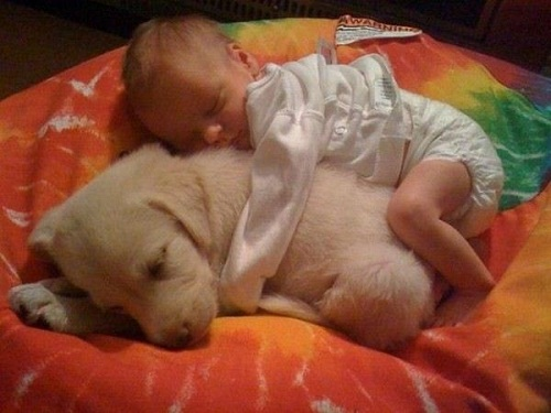 Baby_Snuggling_With_Puppy