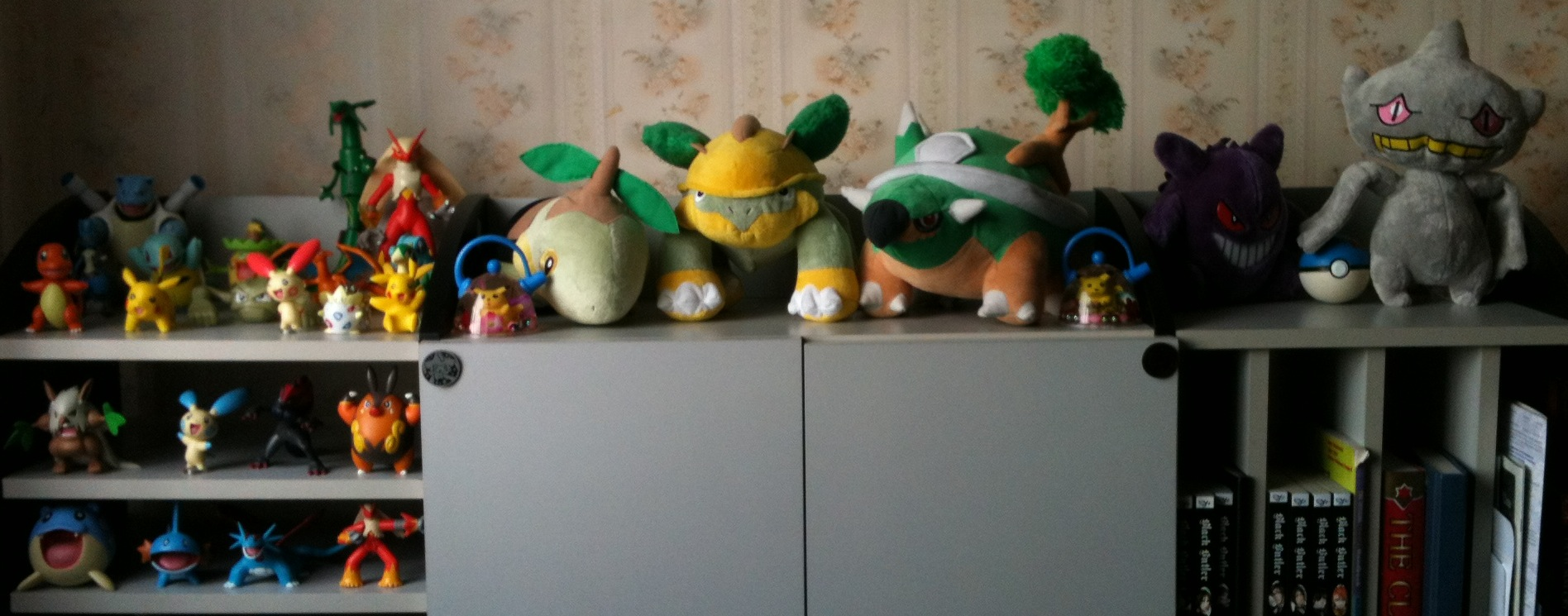Pokemon Collection overall 2