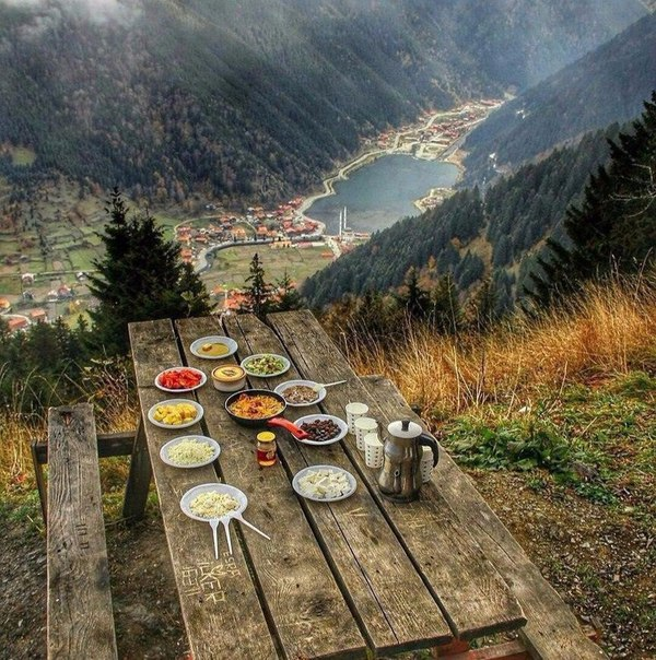 природа фото еда