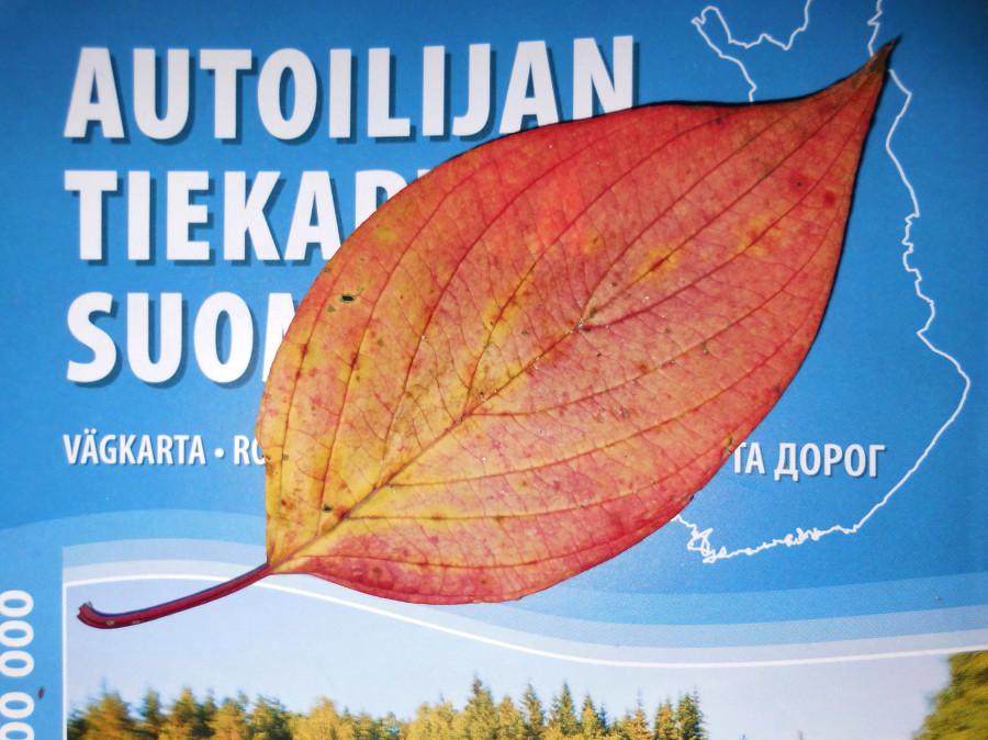 Лист на карте Финляндии