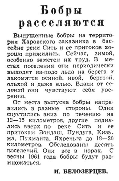 Красный Север, 1961, №4 Бобры в Харовске.jpg