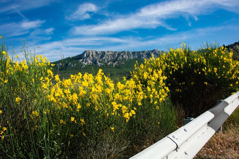 Испанский дрог у трассы с видом на хребет Донгуз-Орун