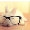 bunny_14