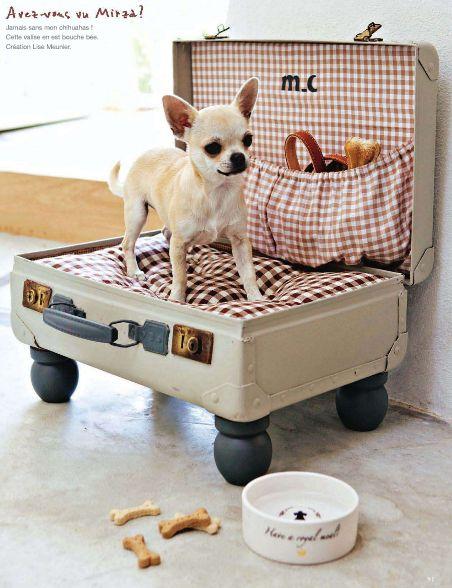 dog place (2)