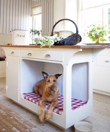 dog place (3)