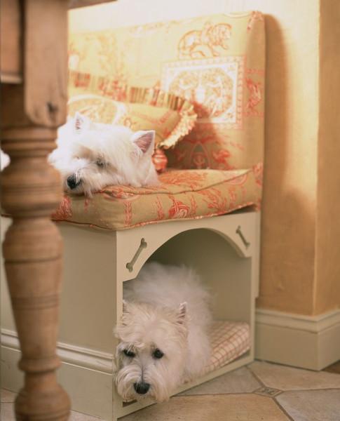 dog place (4)