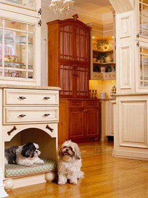 dog place (6)