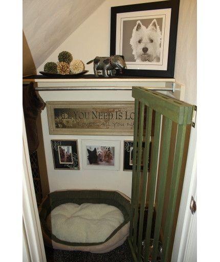 dog place (8)