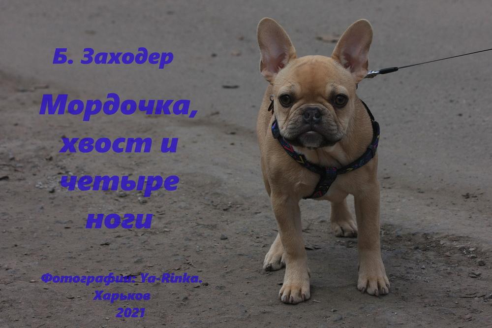 Детская книжка с картинками. Харьков.