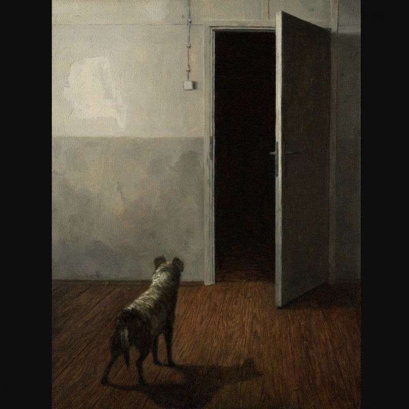 КДПВ: Dragan Bibin (instagram: @draganbibin)