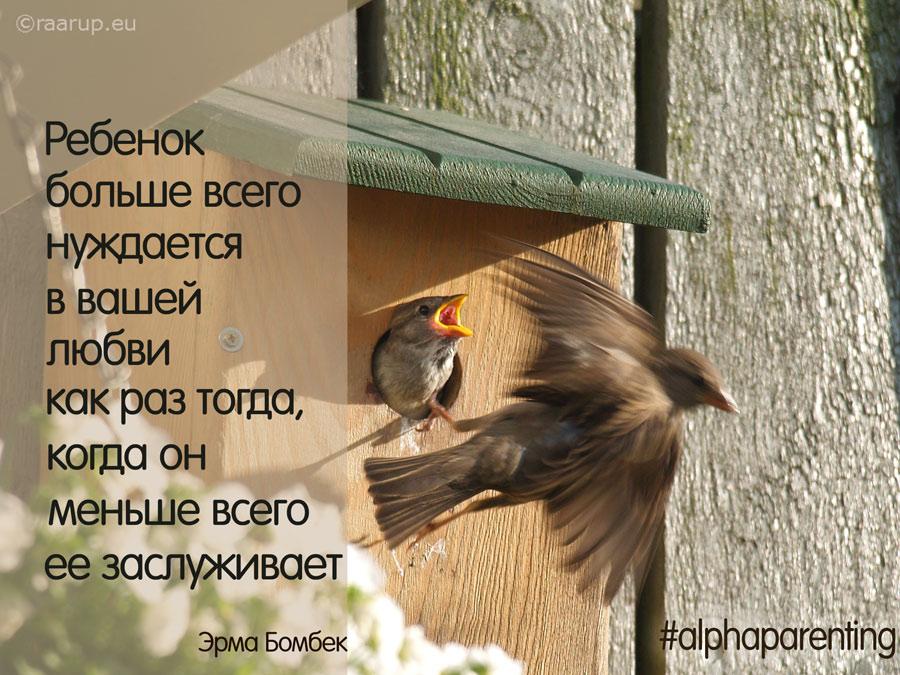 14132459878_4119b106f9_o