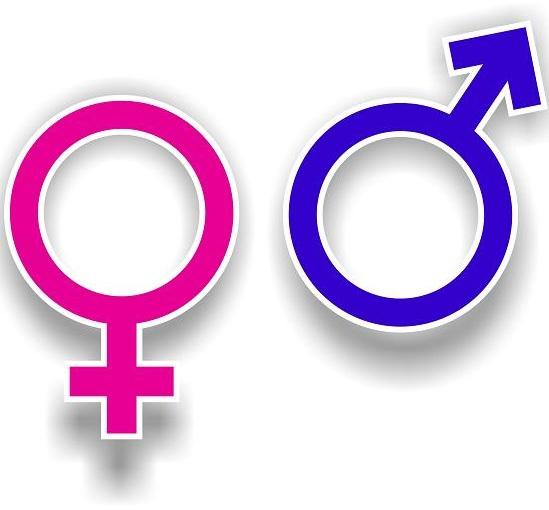 различия-мужчин-и-женщин