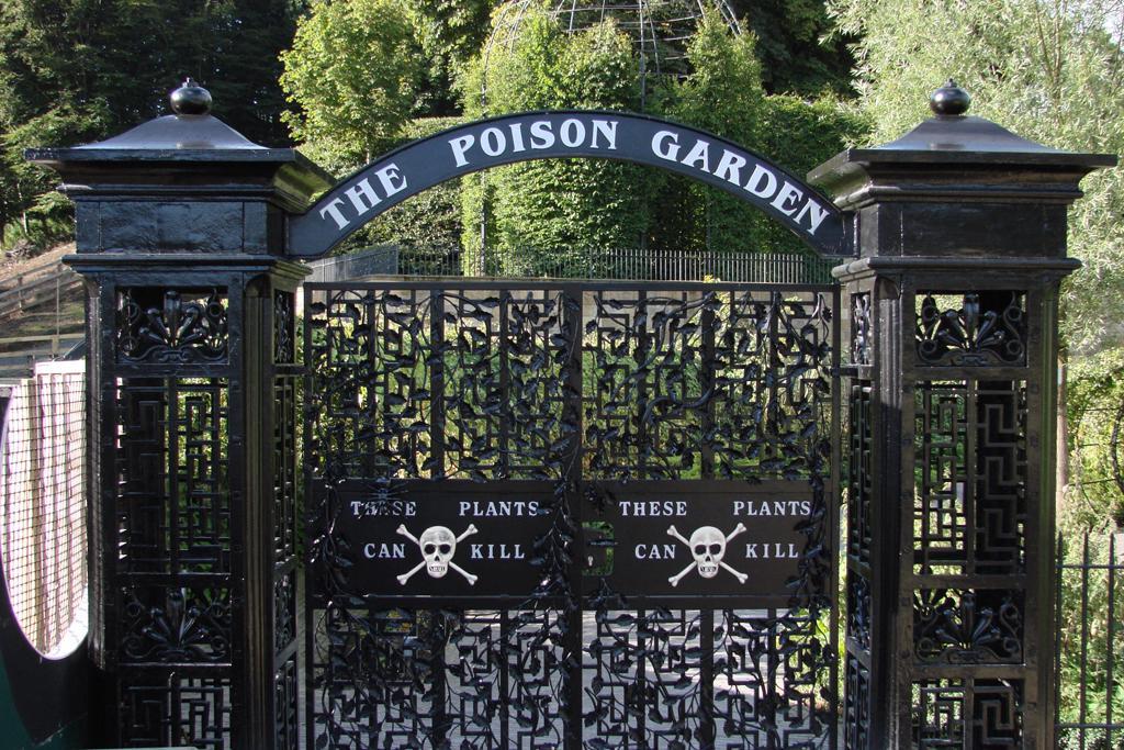 poison01