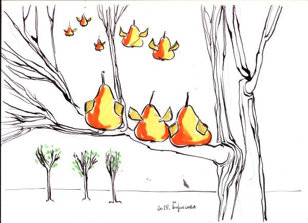 1500-migratory-pears