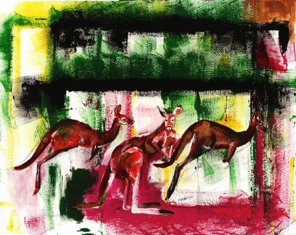 outrageous&kangaroo-1500