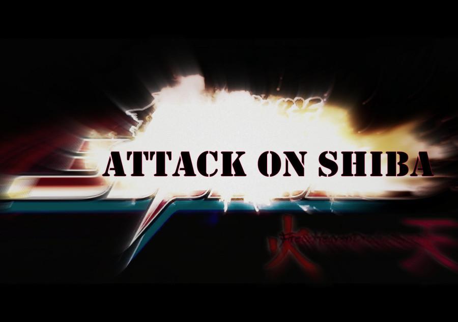 ATTACK ON SHIBA