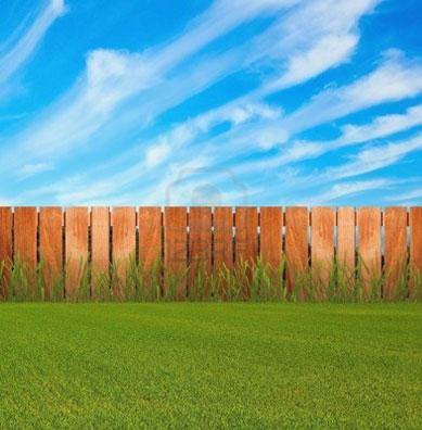 green-grass-small