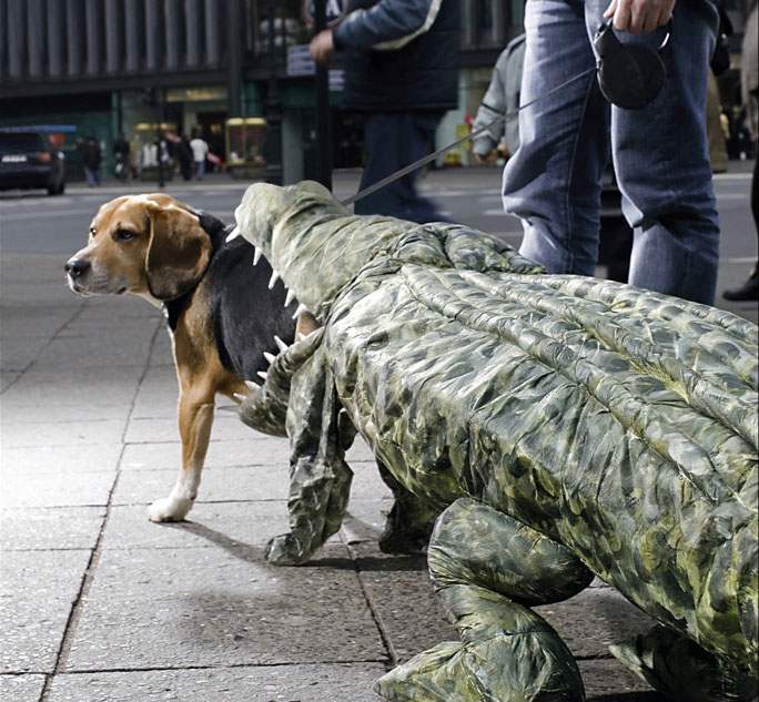1-Crocodile-Dog