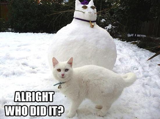 snowman-funny-cat-fat-1