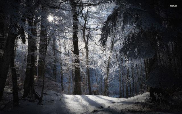 Snowy-Evening-640x400