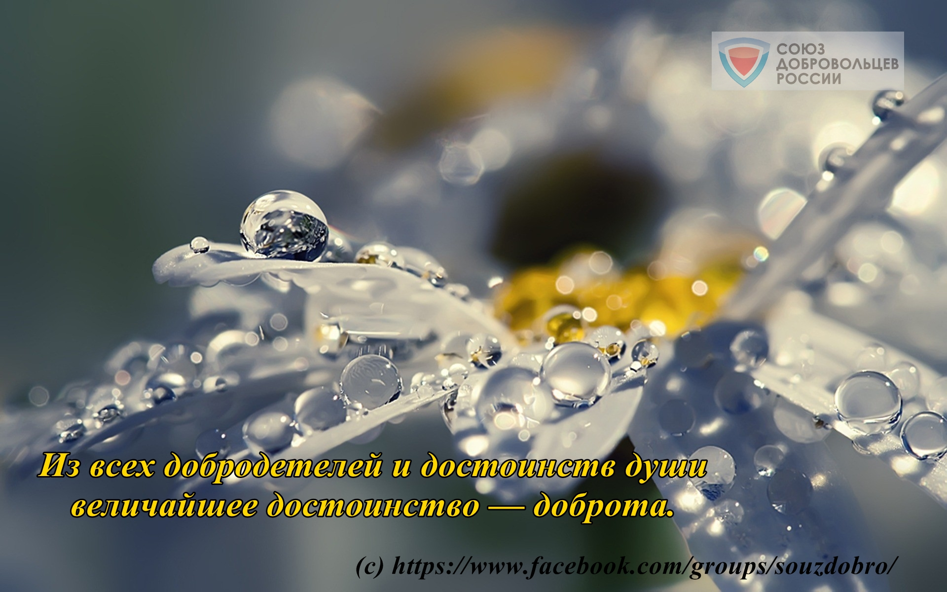 ogoom.com_1364205812_creative_pic-22