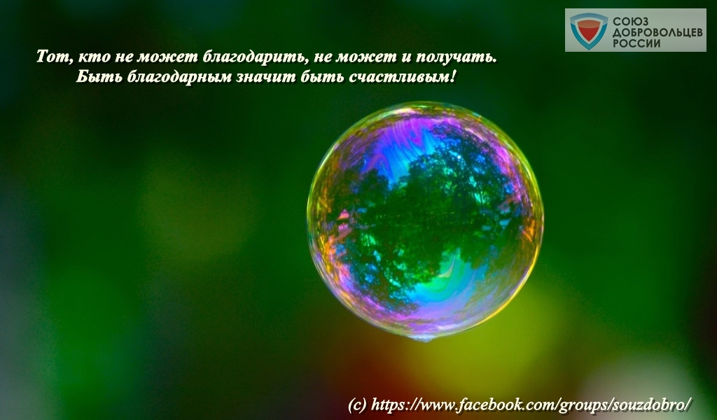 desktopwallpapers.org.ua-2016