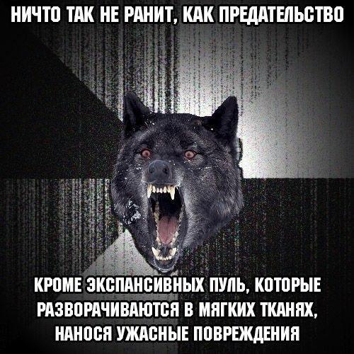 eXylObMzrvw