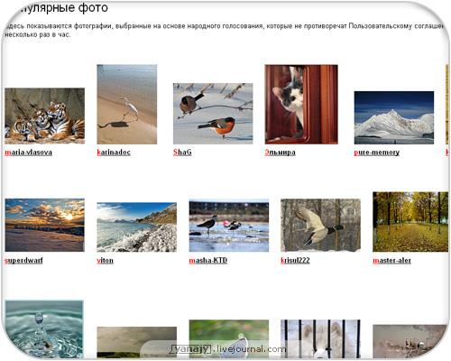 превью на Яндекс.фотках