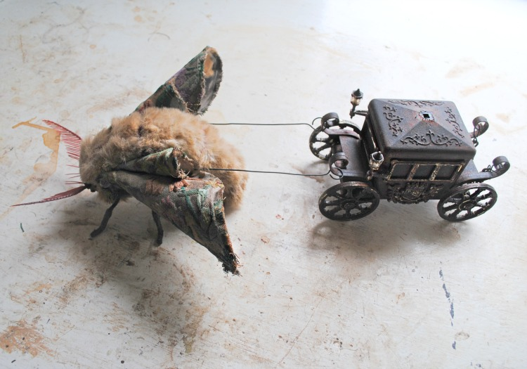 Moth-and-coach-small