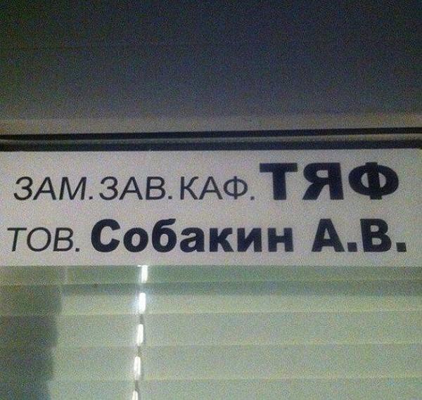 Zam kaf tyaf