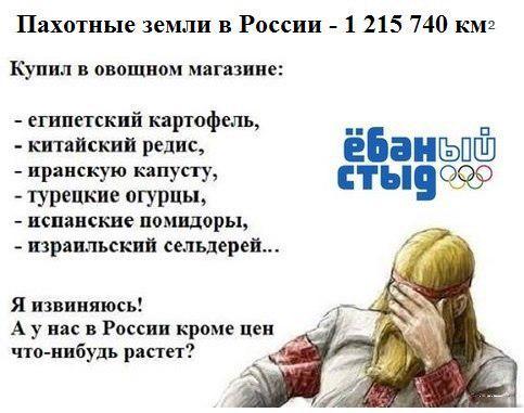 1442149761-99fa93cd541c662912325564bae7c403 (1).jpeg
