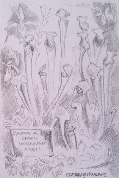 ботанический-сад-004