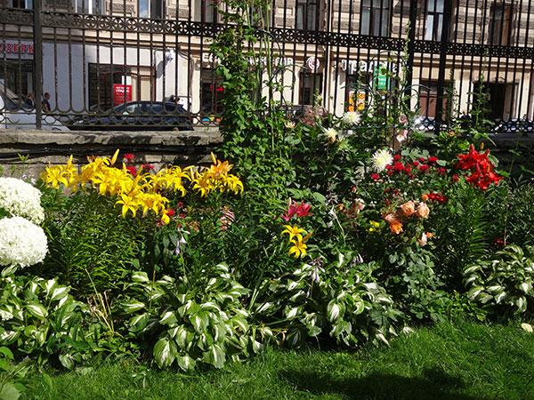 сад-у-Вл.собора