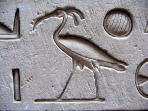 Феникс в Египте