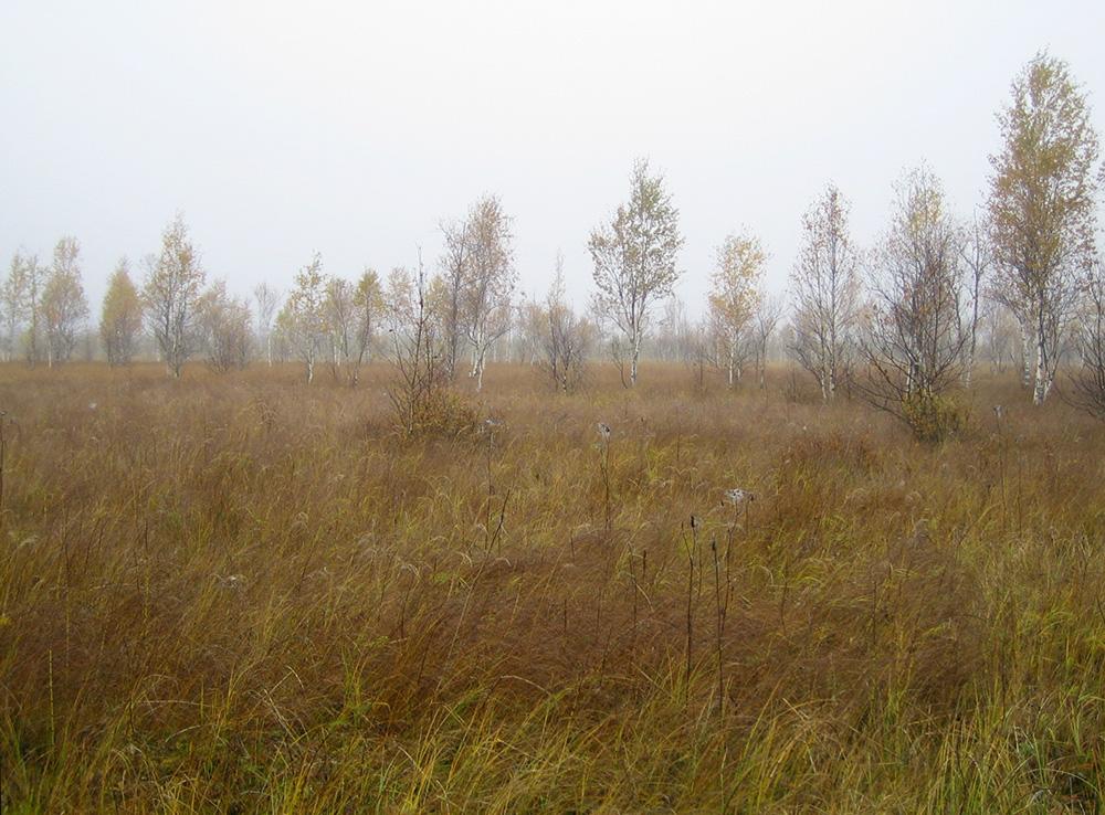 Спасское озеро 003
