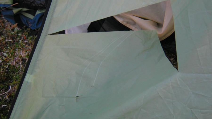женина палатка