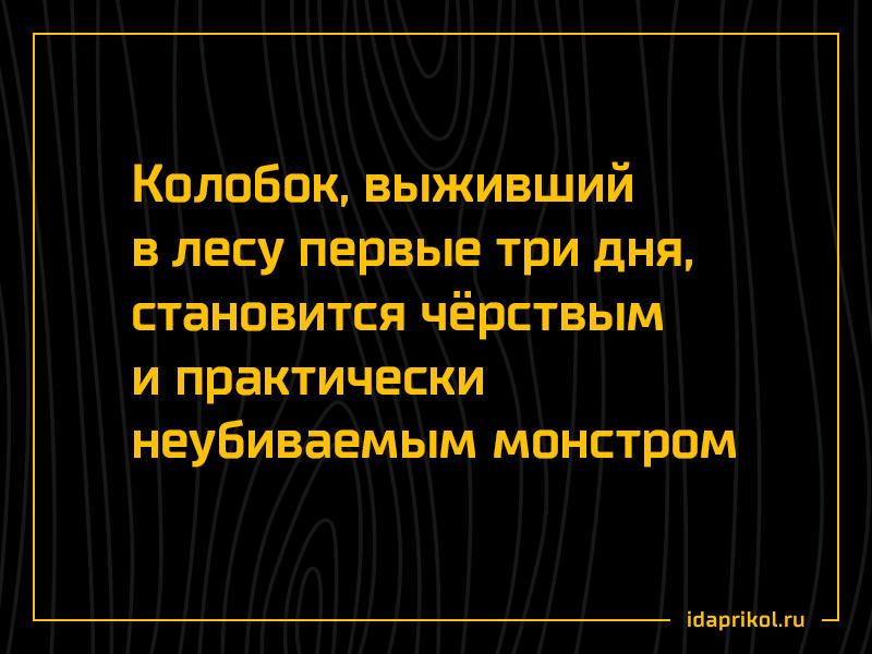 колобок_выживание