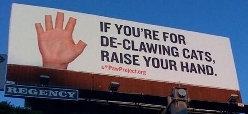declawing-cats-billboard