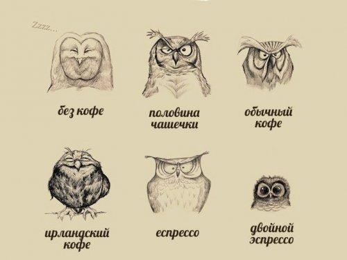 1416414778_zhiteyskaya-mudrost-17