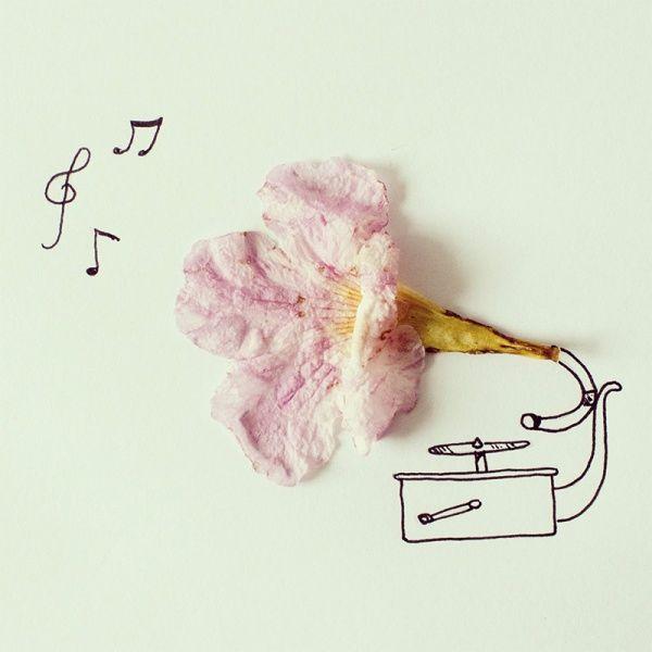 хавьер перес, цветочек