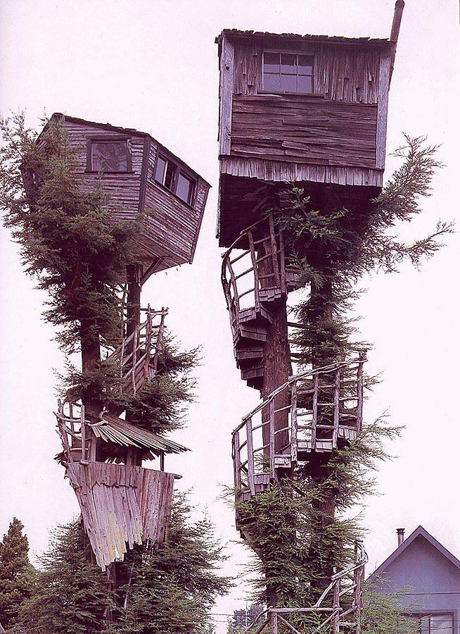 Прикольные картинки домов
